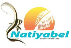 logo nouveau Nati